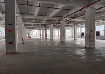 石岩福龙路口红本独院1/5层12500平方仓库出租,可分租图片3
