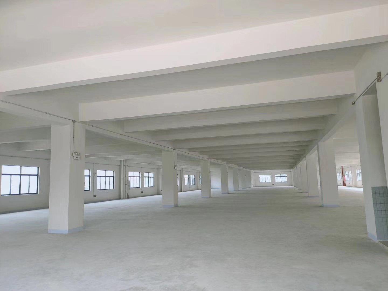 中山南朗全新标准厂房价格便宜