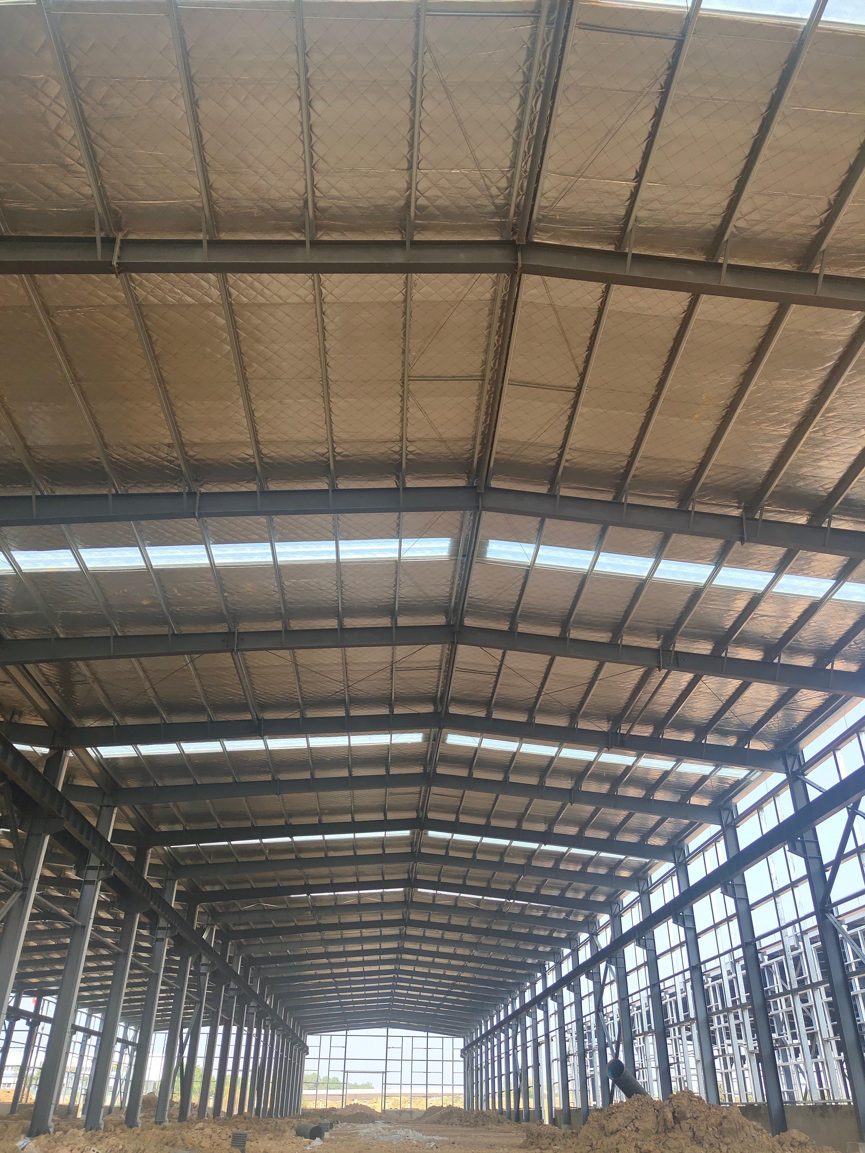售前川24米跨高标钢构厂房,高11.8米-图4