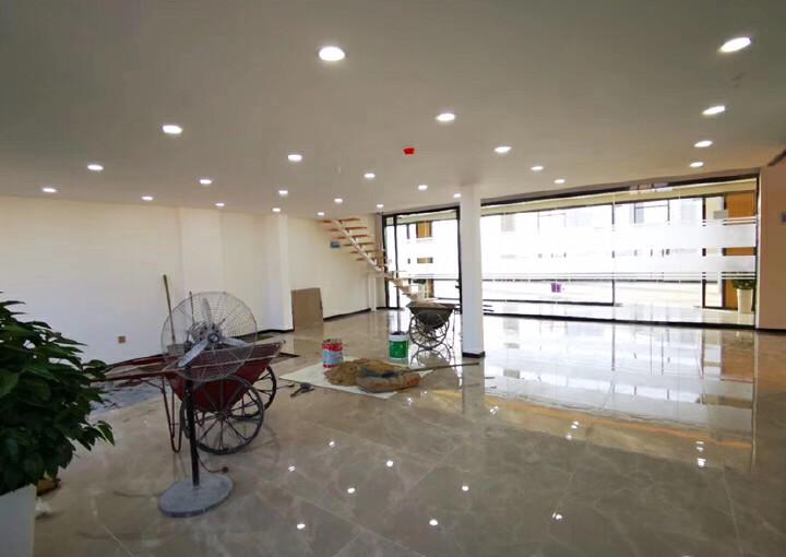 坂田10号线地铁口甲级写字楼复式豪华装修235平图片6