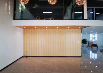 坂田10号线地铁口甲级写字楼复式豪华装修235平图片1