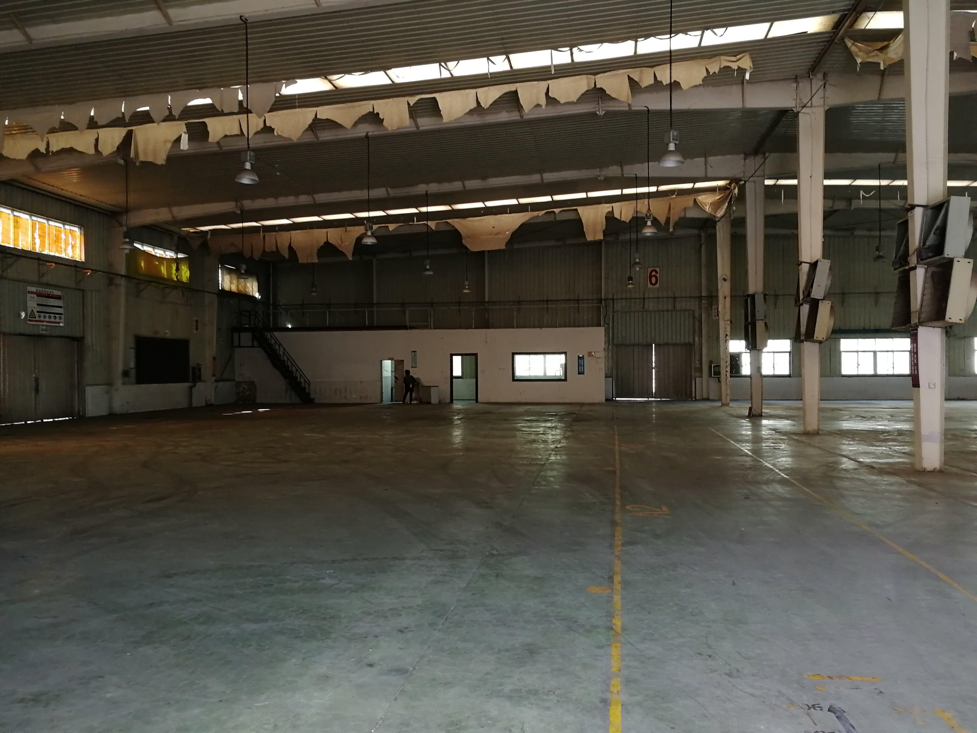 樟木头镇原房东独院单一层厂房,滴水8米,空地1000平方!