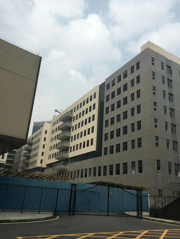 东莞常平汽车东站旁新出全新厂房带红本40万平米500平起售-图2