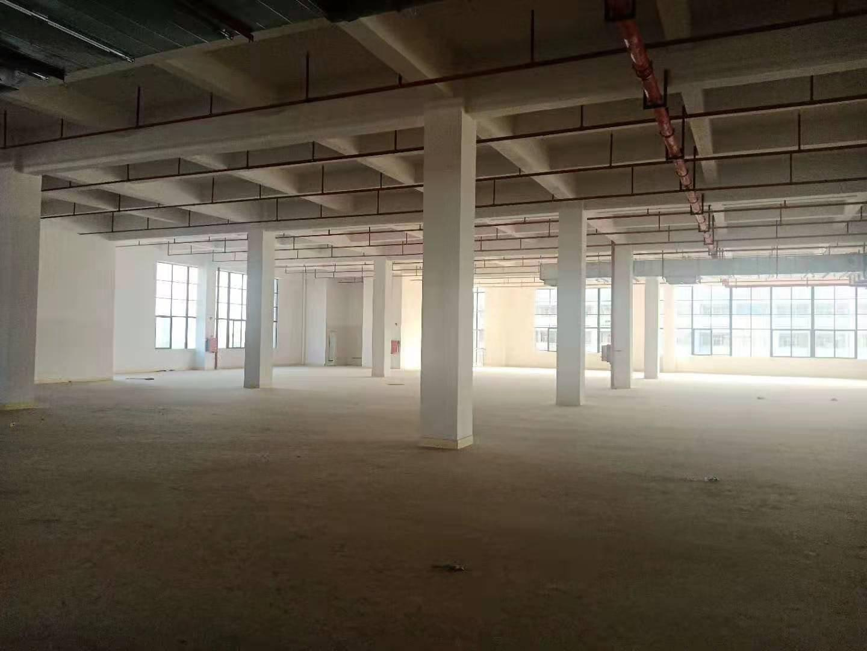 惠城区陈江镇标准厂房三楼2700平方招租-图2