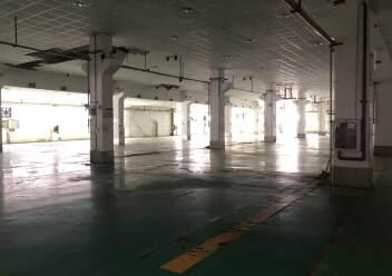 龙华清湖一楼1500平厂房仓库出租图片2