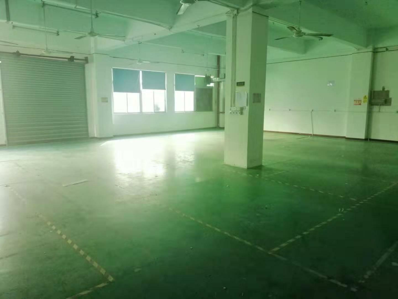 龙华大浪新百丽原房东实际面积精装修700平方出租