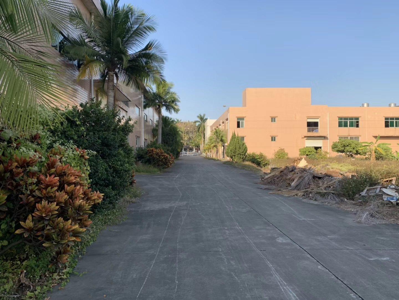 建筑4200平方单一层钢构独院出售800万