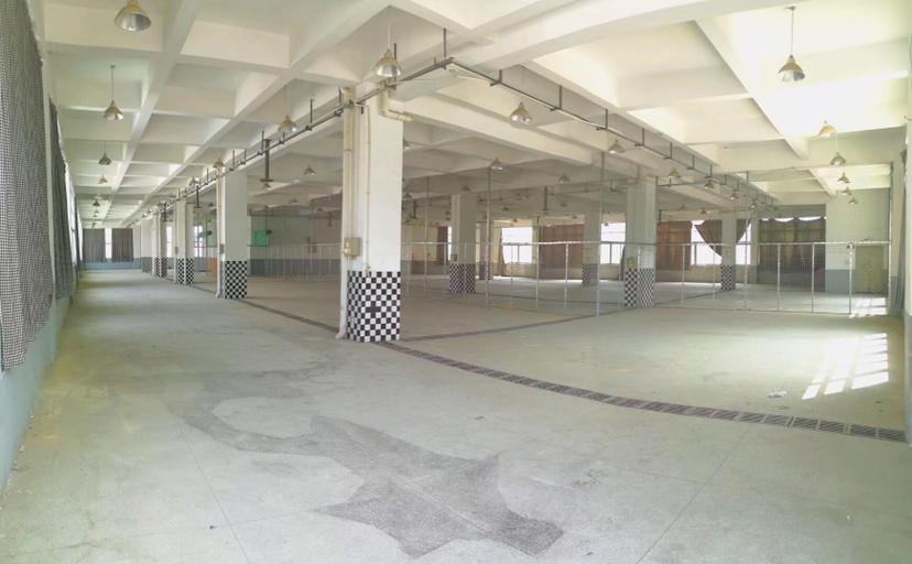 平湖高速出口原房东独门独院厂房7500平招租-图4
