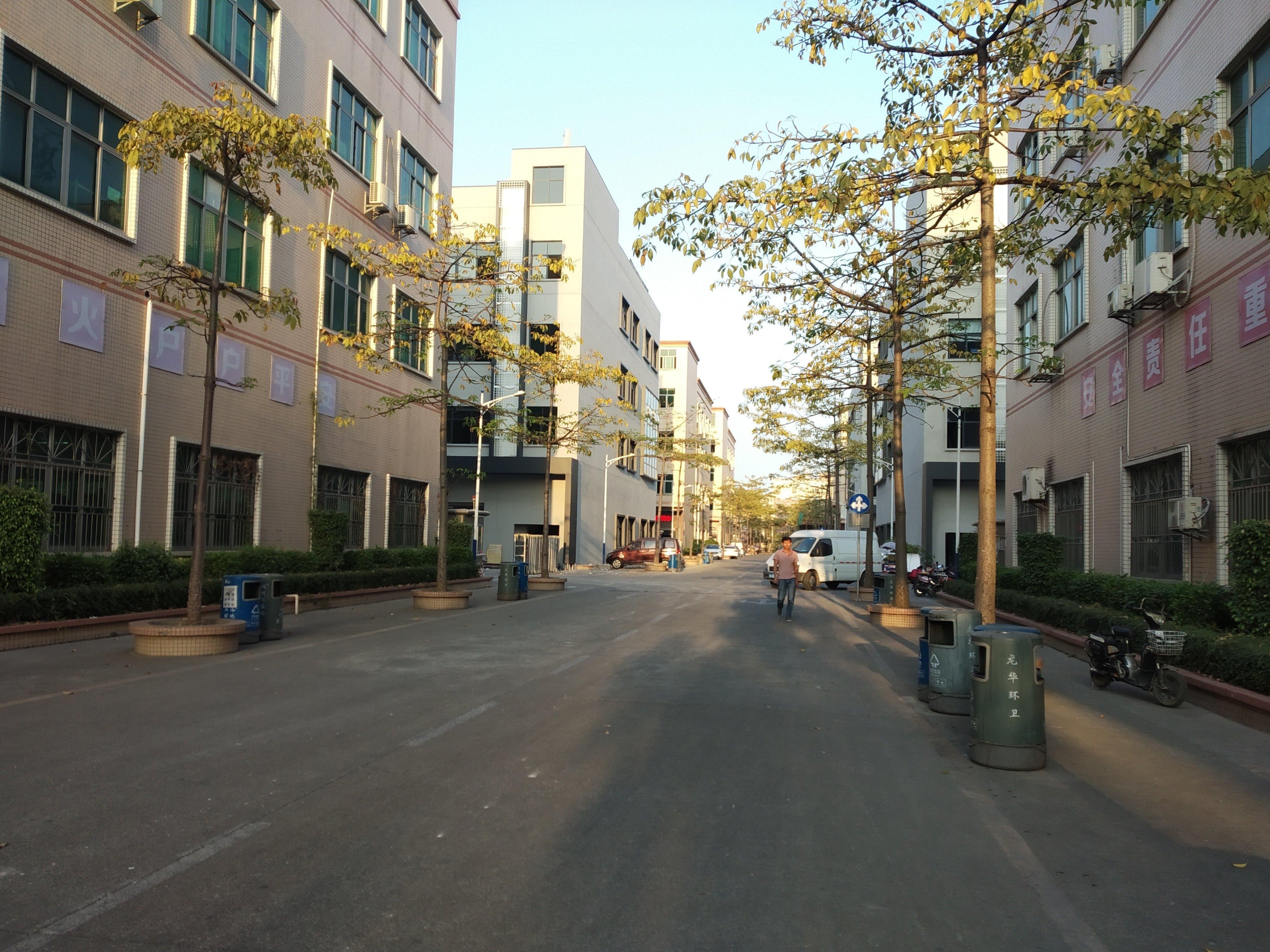 龙华大浪工业园独院红本仓库出租厂房出租整层建筑面积1620平
