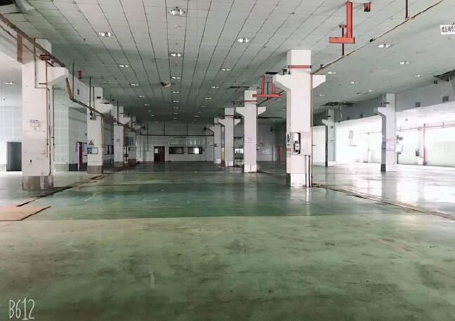 龙华清湖一楼1500平厂房仓库出租