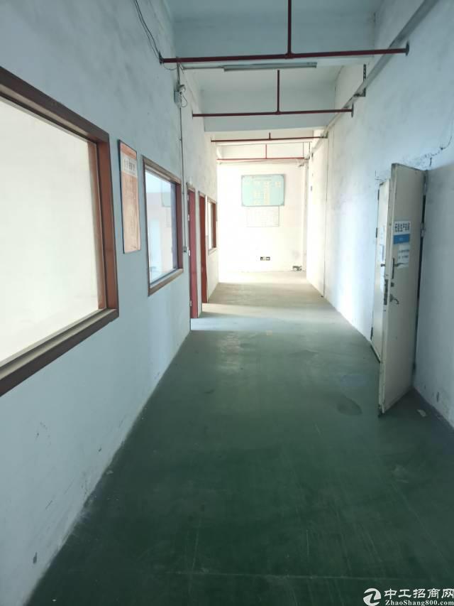 福永新出楼上20块厂房,3400平米,大小可分租!-图6