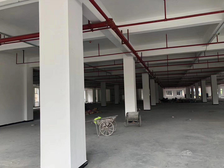 博罗龙溪镇工业园区标准厂房分租3000,证件齐全,有市政排污-图3