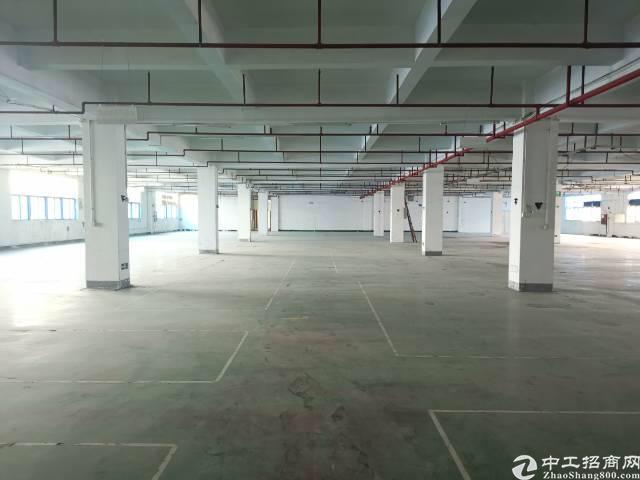福永新出楼上20块厂房,3400平米,大小可分租!-图3
