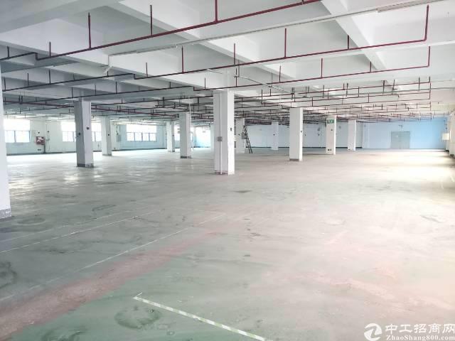 福永新出楼上20块厂房,3400平米,大小可分租!-图5