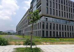 东莞道窖全新红本厂房,写字楼,50年产权,分割出售独立红本