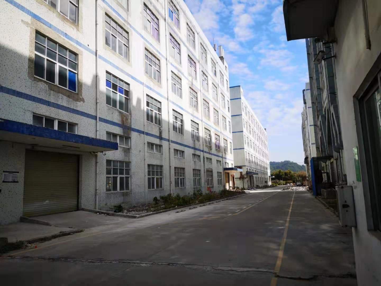出租龙岗6500平原房东实际面积厂房可分租