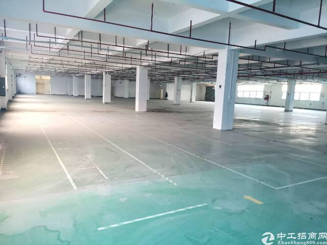 福永新出楼上20块厂房,3400平米,大小可分租!-图4