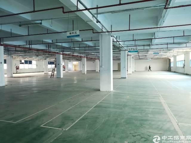 福永新出楼上20块厂房,3400平米,大小可分租!-图7