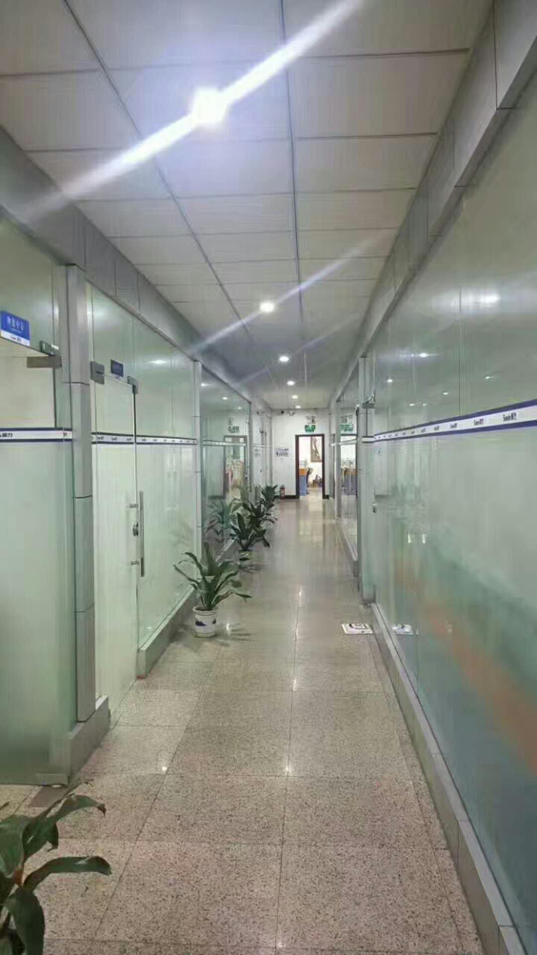 松岗地铁口新出一楼1700平米原房东厂房实际面积出租,可分租-图6