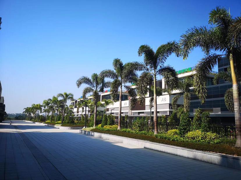 惠州惠城花园式厂房、独栋研发楼800至1000㎡分割出售
