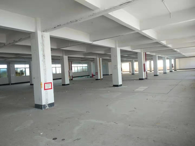 荔湾独院仓库出租一层1900方证件齐全空地3000方楼上25