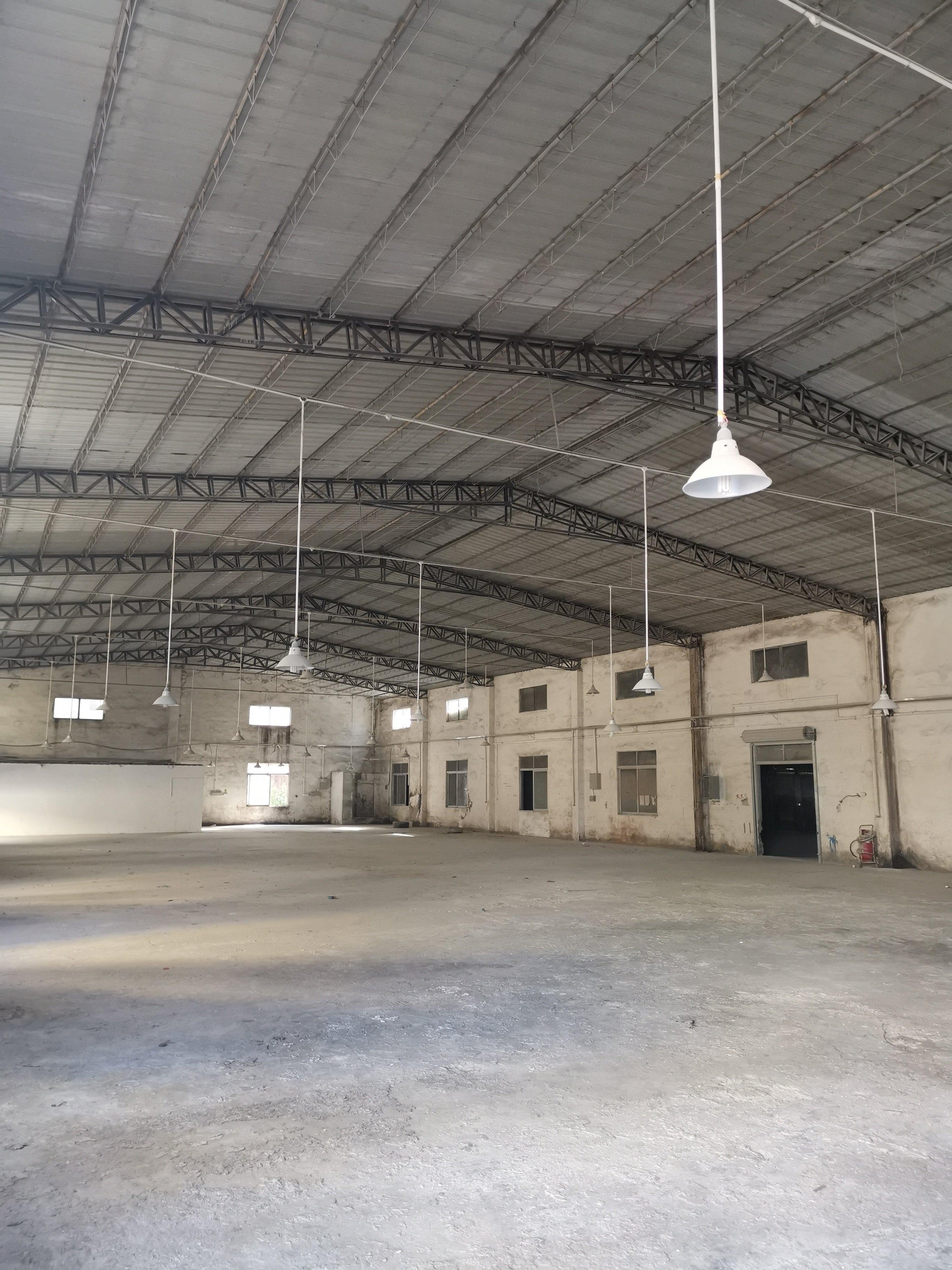 临深钢结构厂房,8000平米,单价2000元/㎡