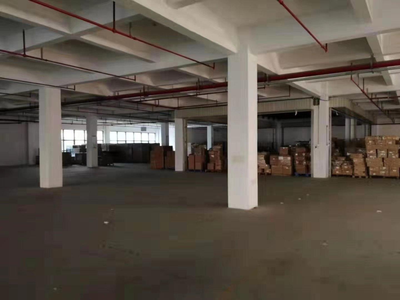 光明公明楼村大型工业园区楼上整层2600平带精装修厂房出租-图4