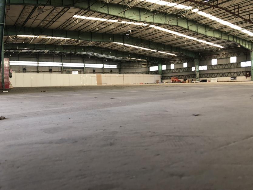 南山蛇口7000平钢构厂房,层高7米,可分租