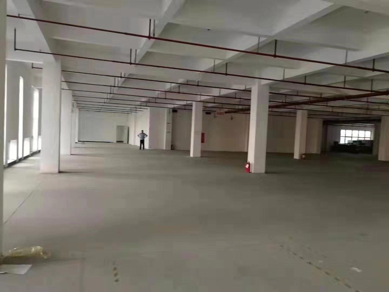 光明公明楼村大型工业园区楼上整层2600平带精装修厂房出租-图3