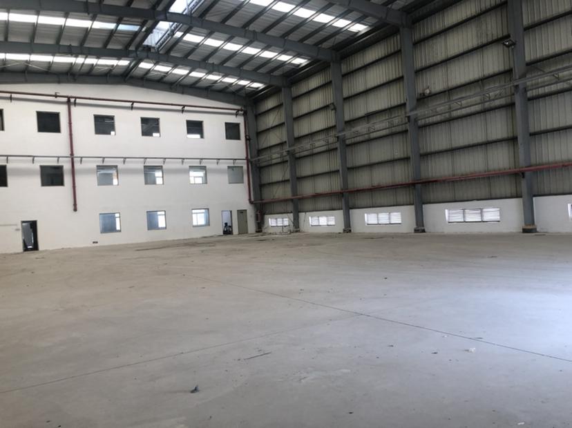 南山蛇口2800平12米高厂房,一手业主直租