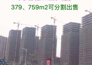 国有红本厂房,写字楼,东莞常平项目新推出一期,二期小面积高层图片5