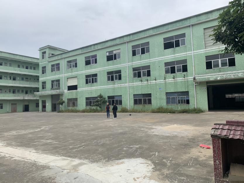 坪山工业区专业茶仓库厂房出租2000平50平起分现成装修