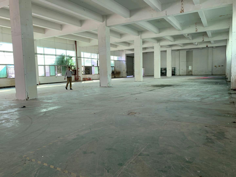 龙华区大浪大型工业园区厂房仓库出租面积2000平,价格便宜