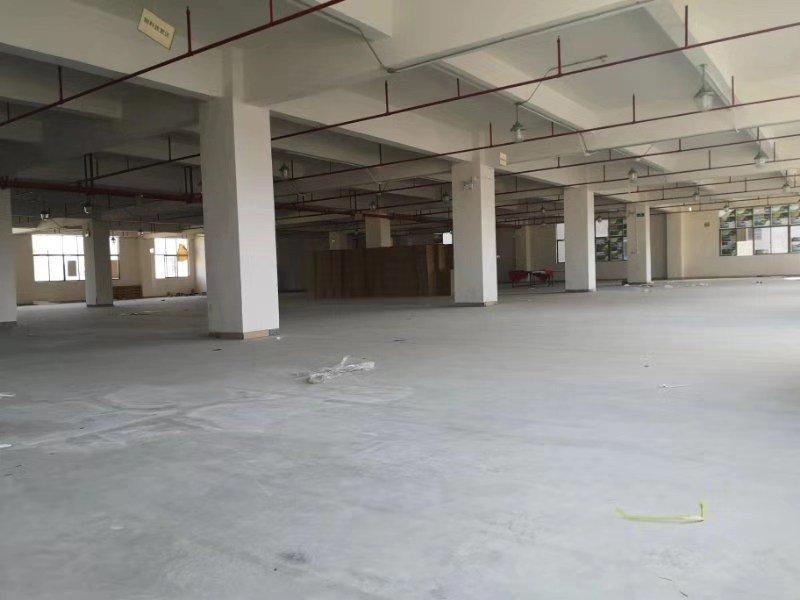 光明公明楼村大型工业园区楼上整层2600平带精装修厂房出租-图2