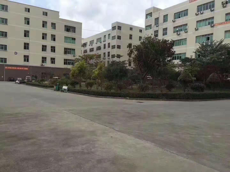 龙华大浪原房东红本园区一楼带装修2000平方出租