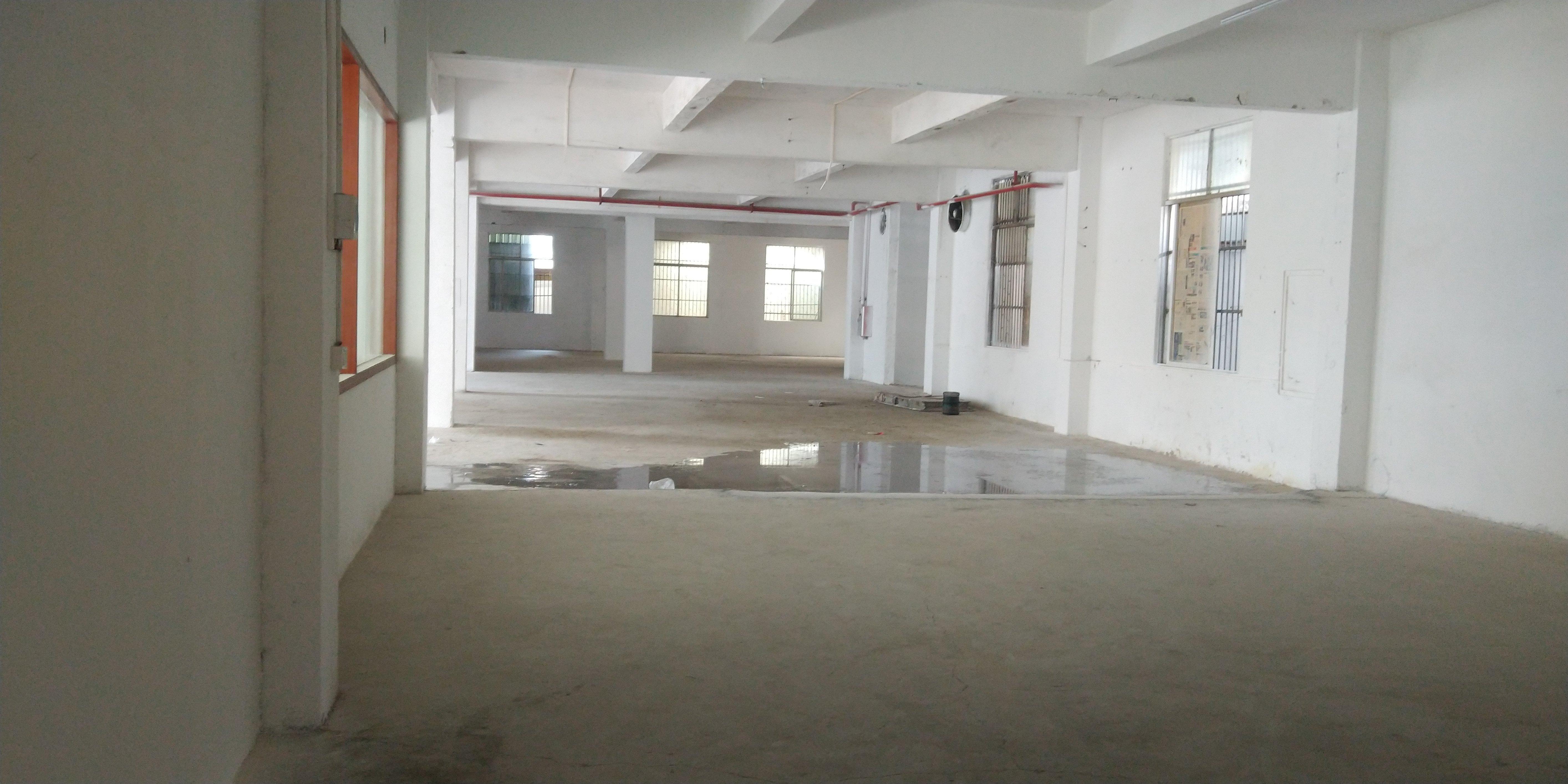 惠州市河南岸新出工业园区独栋厂房4200平方招工方便