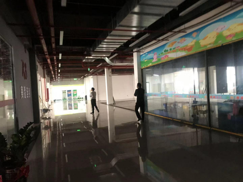 龙华油松全新青年创业园精装修办公室出租80平起租-图2