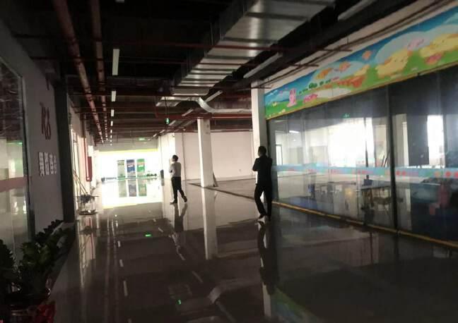龙华油松全新青年创业园精装修办公室出租80平起租