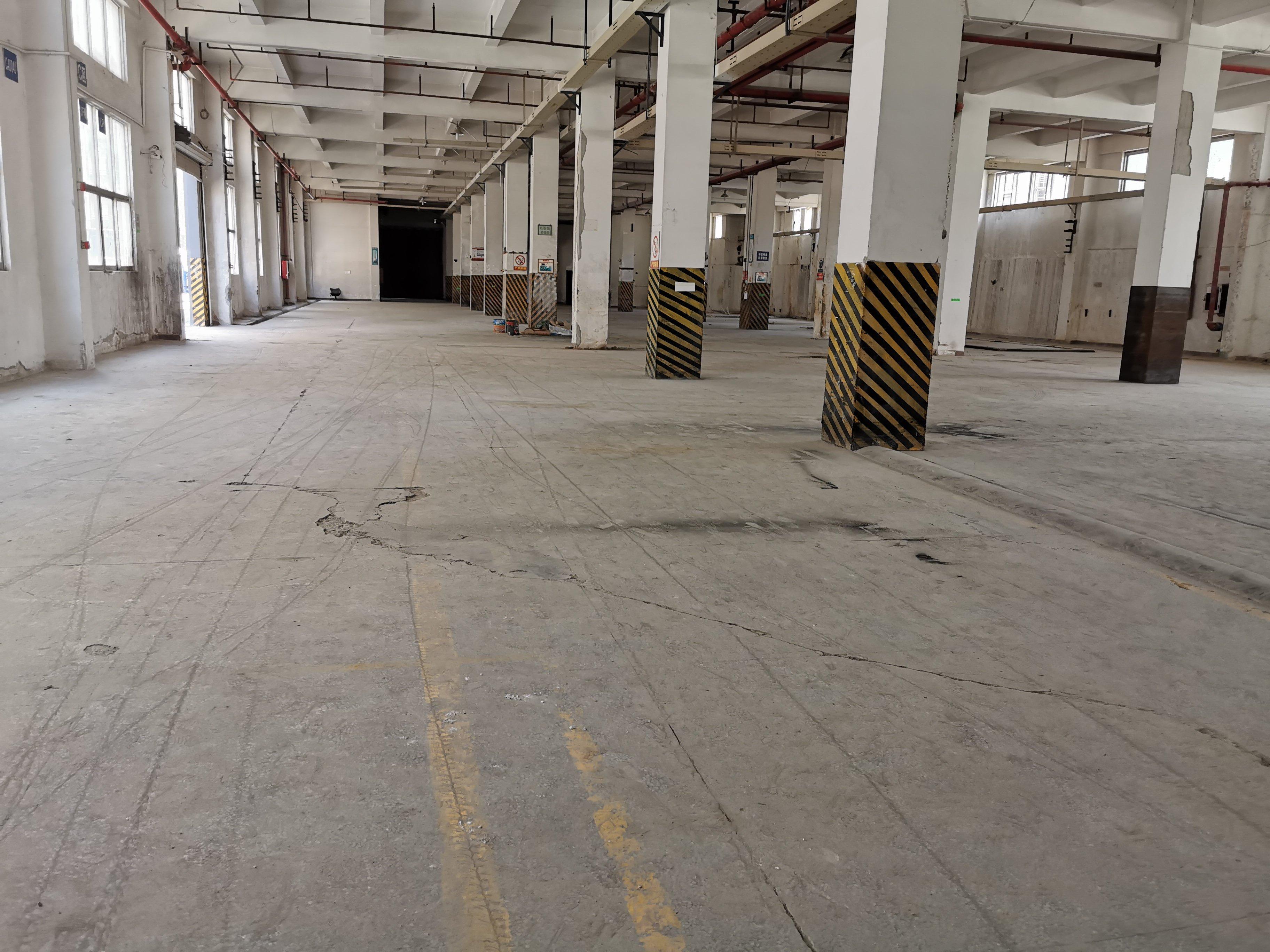 观澜地铁口红本厂房1-4层9800平方价格26块,一二楼6米-图3