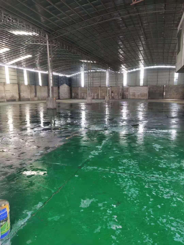 大沥镇原房东独门独院单一层滴水9米自带豪华装修厂房4000租