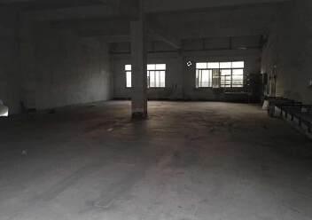 坑梓工业园内一楼480平标准厂房出租图片2