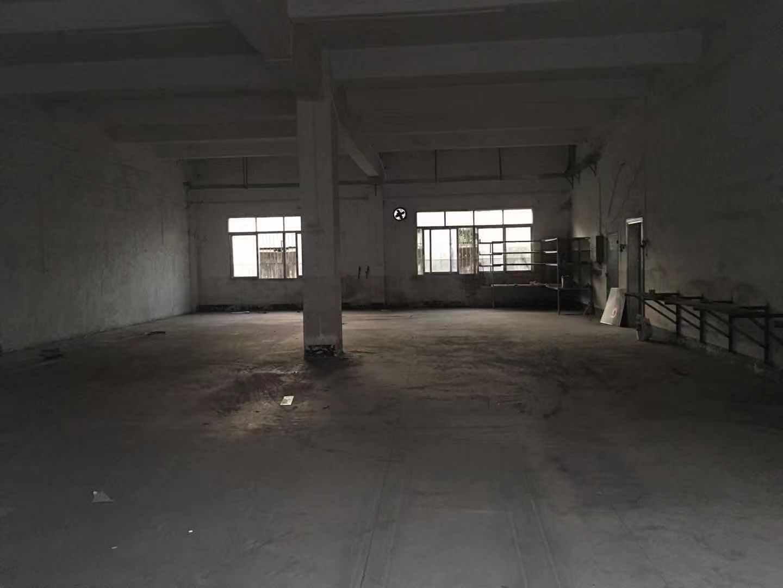 坑梓工业园内一楼480平标准厂房出租-图3