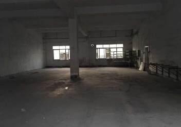 坑梓工业园内一楼480平标准厂房出租图片3