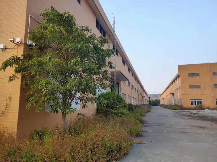 顺德区杏坛镇、原房东砖墙单一层10000平方厂房招租