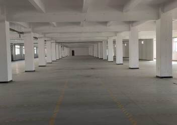 石岩机荷高速出口2900平米原房东厂房招租图片3