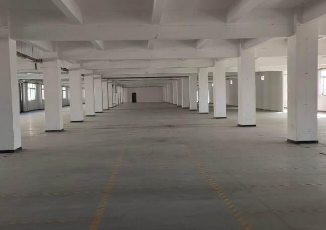 石岩机荷高速出口2900平米原房东厂房招租