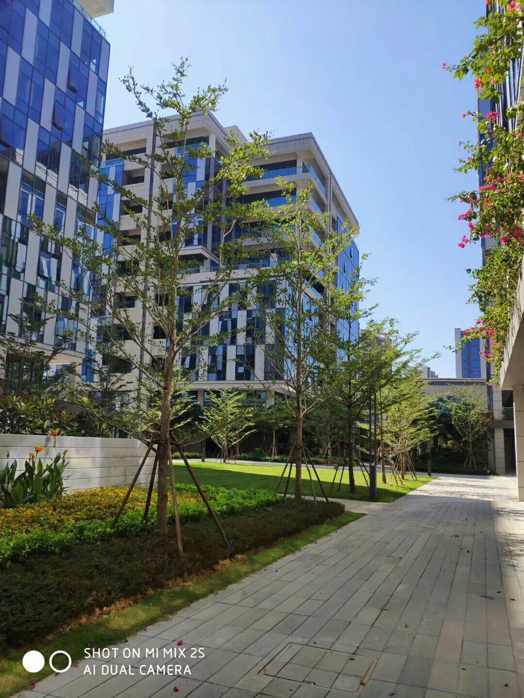 增城区新塘高速路口占地3333平建筑7000平国有证厂房出售