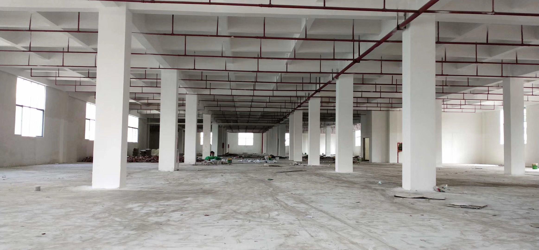观澜樟阁主干道边原房东一楼6米高标准厂房零公摊1650平方