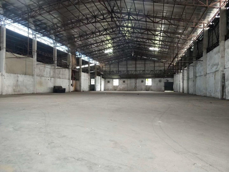 龙岗坪地新出16元2900平独栋6米高钢构厂房