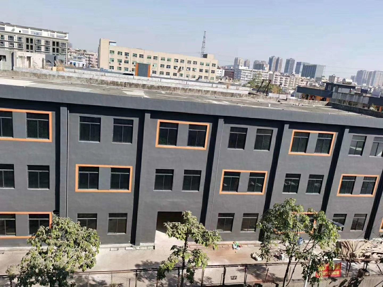 龙东标准独院厂房5000平方出租,全新装修,可分租
